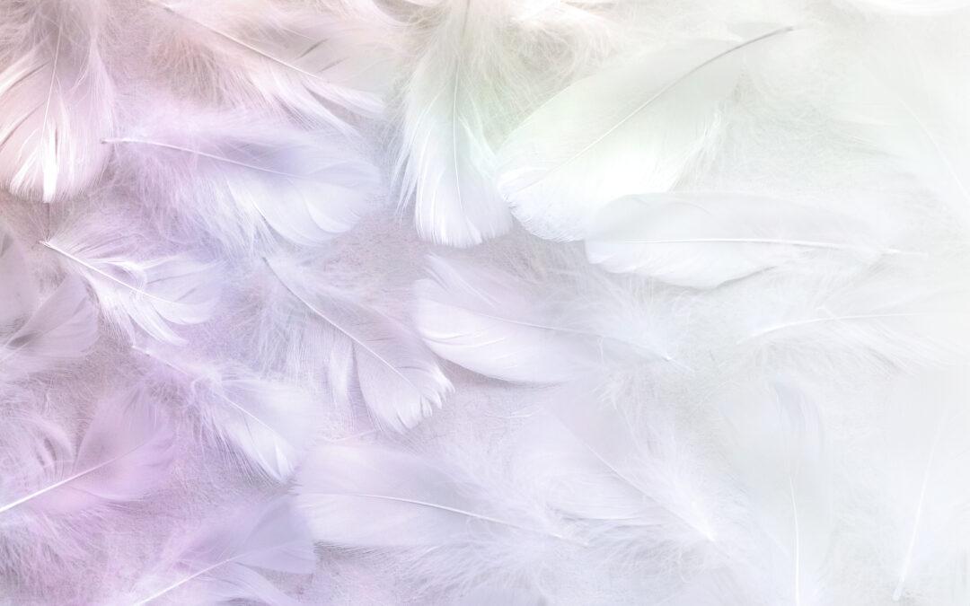 Everyday Angels Update & Reader Request